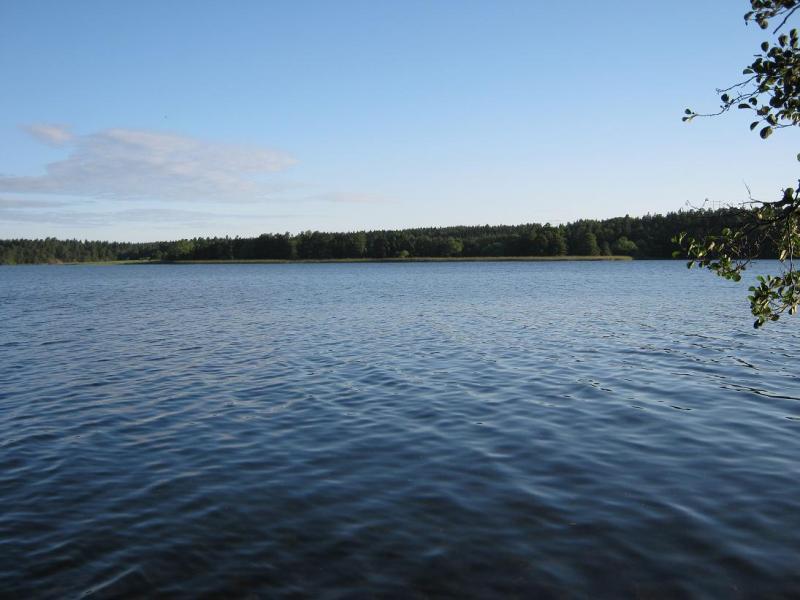 lake-s