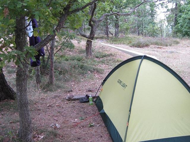 camp2013