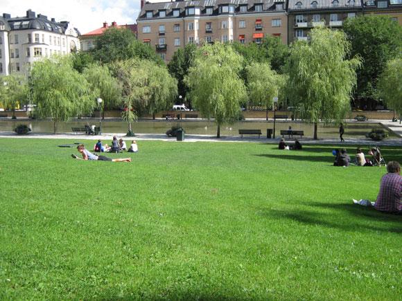 公園で寝そべっている人々の写真