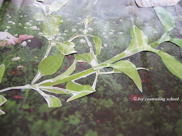 植物がていねいに切り抜かれた部分の拡大図-作品1
